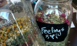 Honoring Prince with New Reiki Infused Tea Blends–Pre Sale through May 10th
